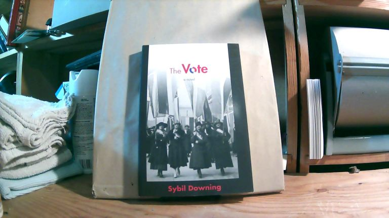 The Vote: A Novel. Sybil DOWNING.