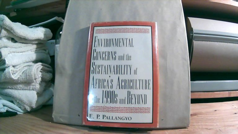 Environmental Concerns And The Sustainability Of Africa's Agriculture In The 1990s And Beyond. E. P. PALLANGYO.