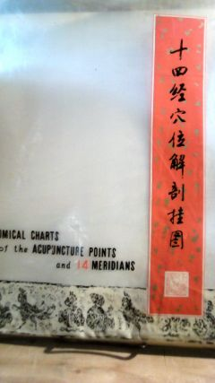 Anatomical Charts of the Acupuncture Points and 14 Meridians. Six large posters in original...